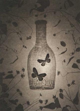 """Ryuji Taira, """"Two butterflies"""""""
