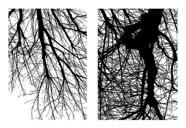 ddays-2016-arbre-eric-gizard-4