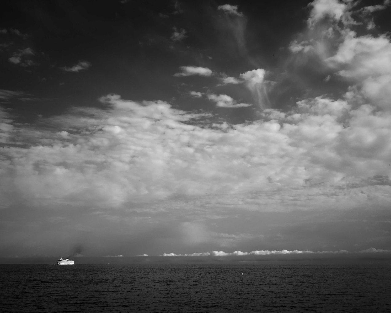 la nave va, Nice, gildalliere, 2017-Modifier.jpg