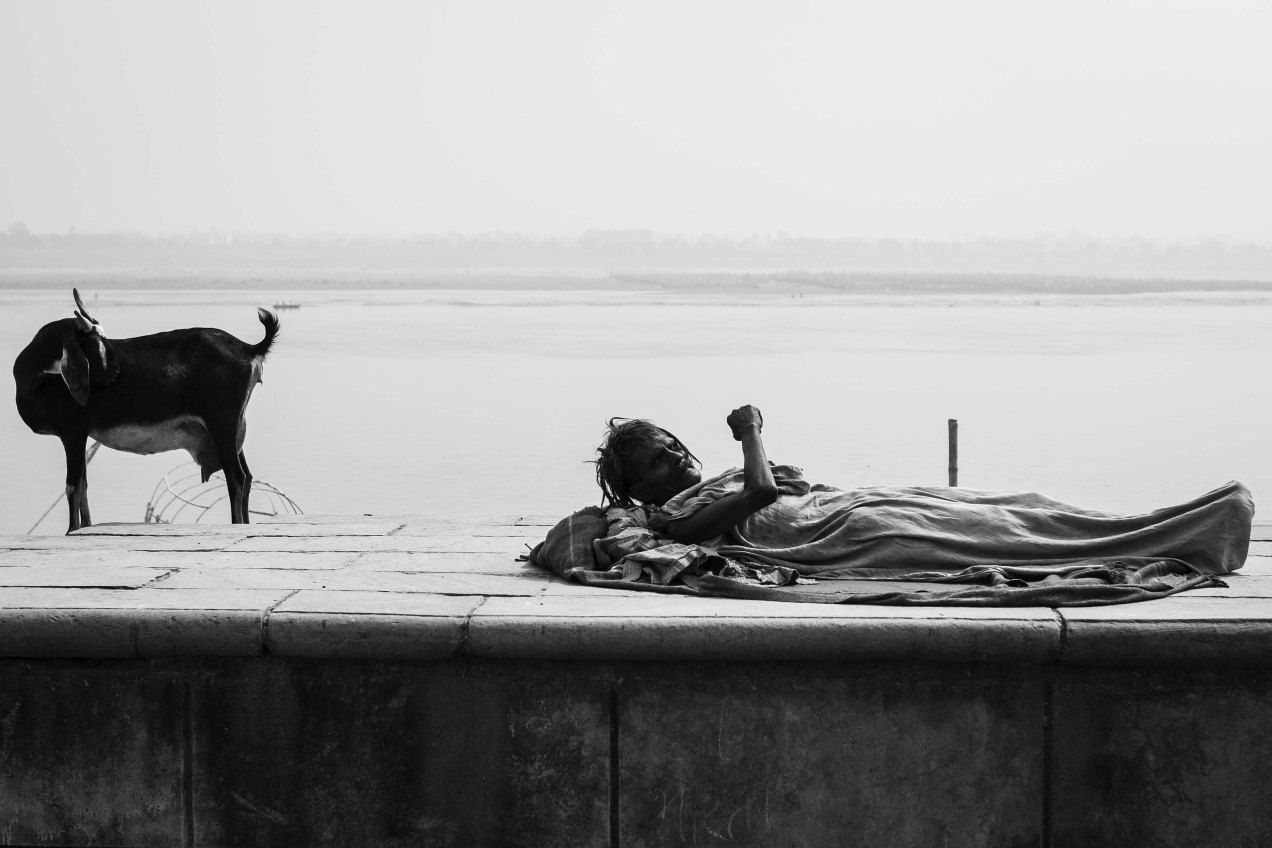 Ganga, gildalliere, Inde, 2008
