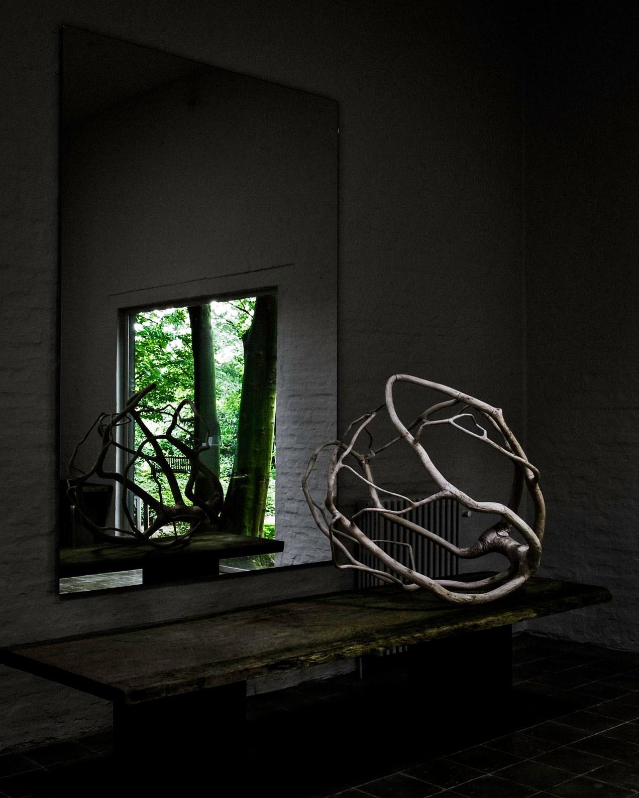 Le miroir aux oiseaux, belgique, gildalliere, 2011