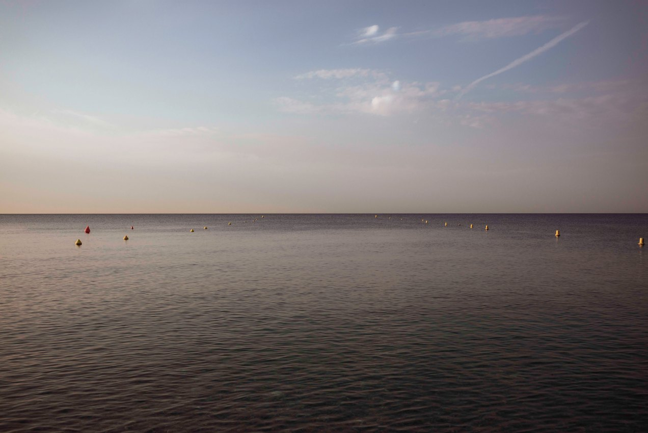 Sfumato, Nice, gildalliere, 2018