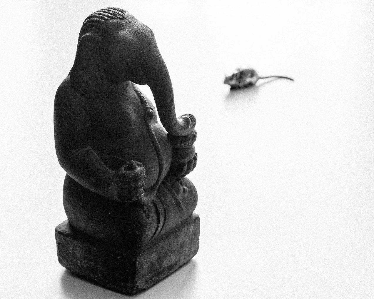 Ganesh, Nice, gildalliere, 2020