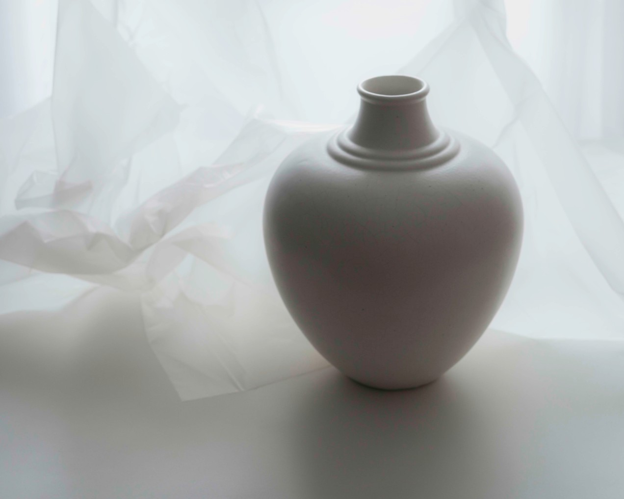 Nature morte, vase 1930 blanc, gildalliere, Paris, 2020