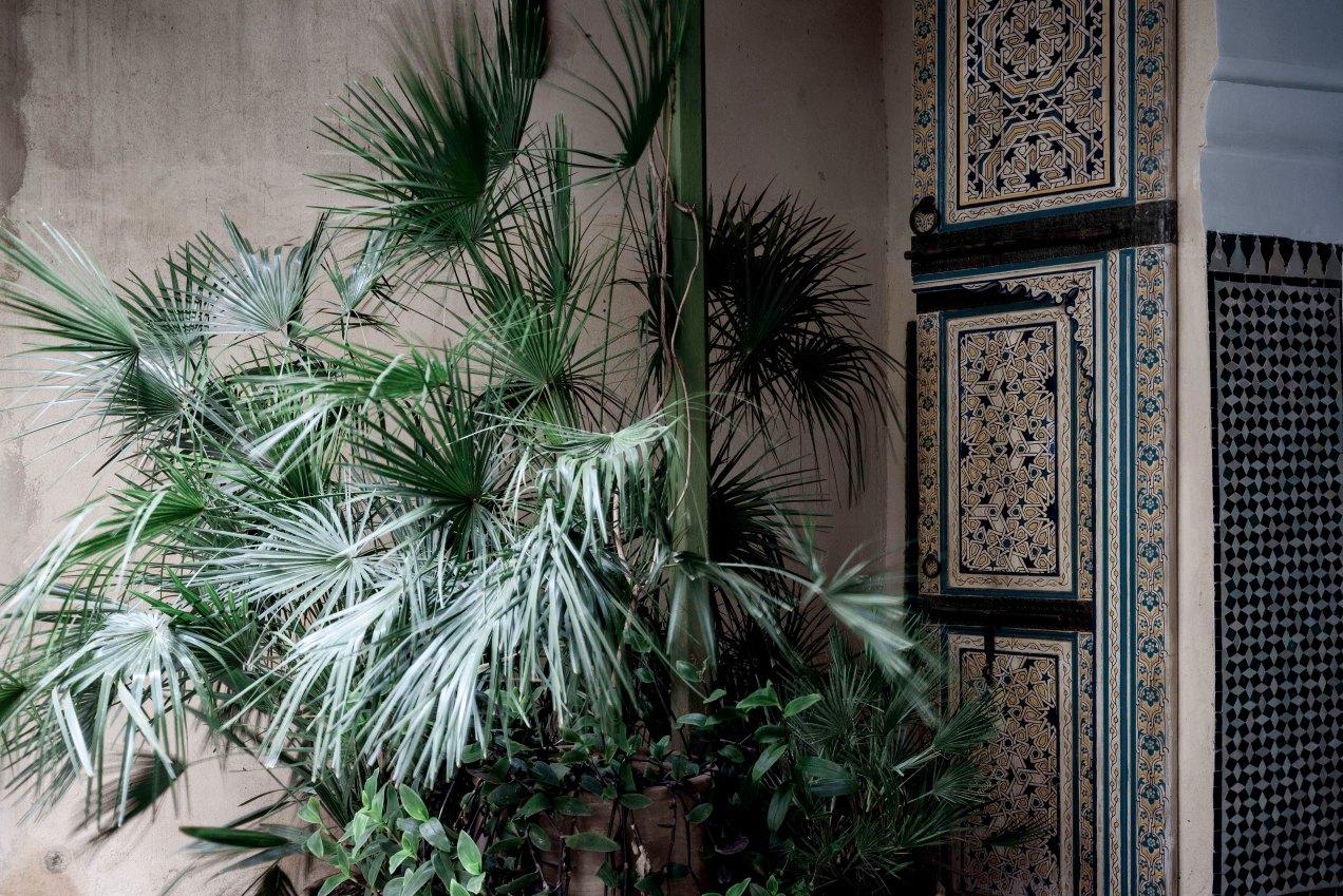 Le jardin des Biehn, la cour, Fès, Maroc, 2020