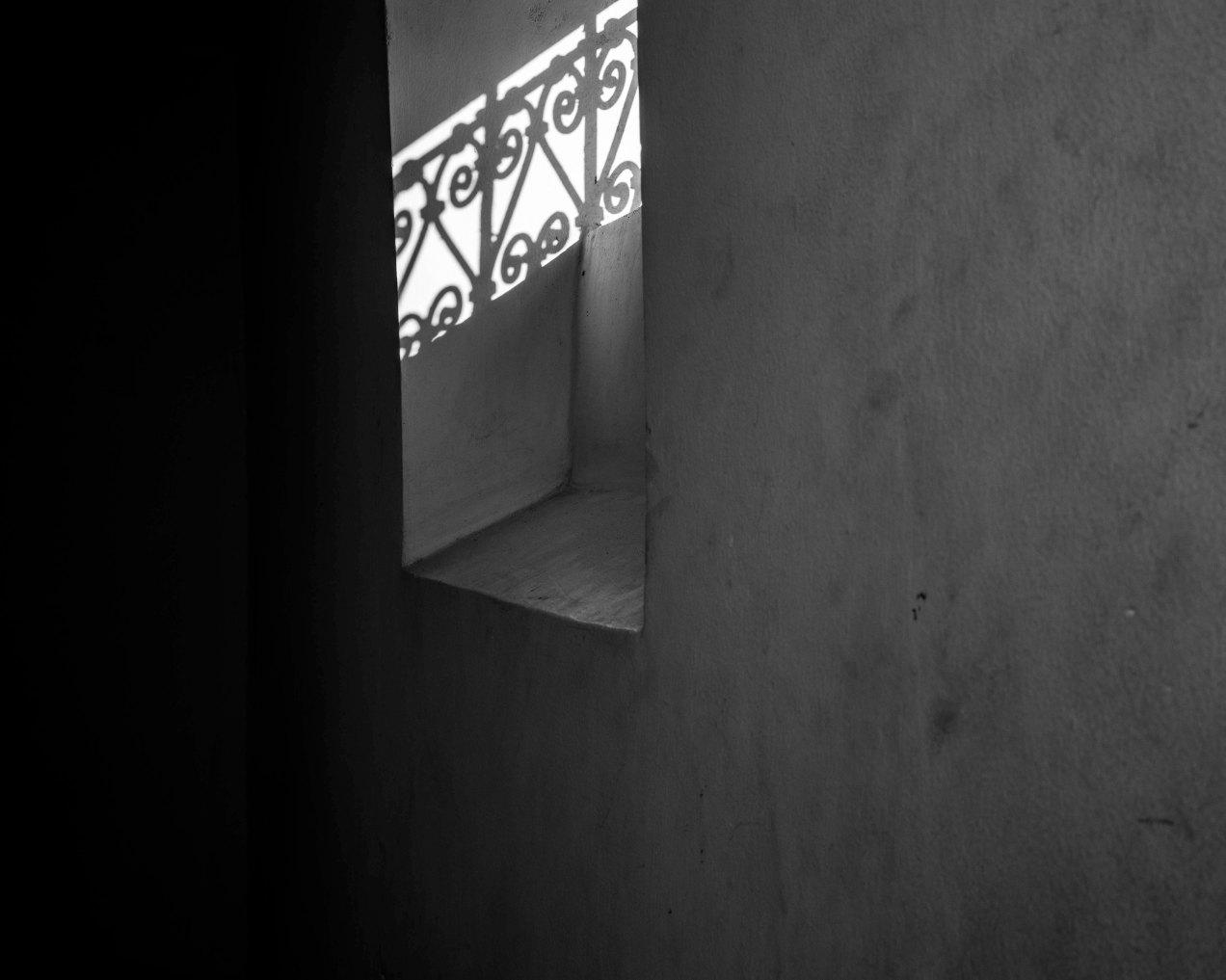 Ombre portée, le jardin des Biehn, gildalliere, Fès, Maroc, 2020
