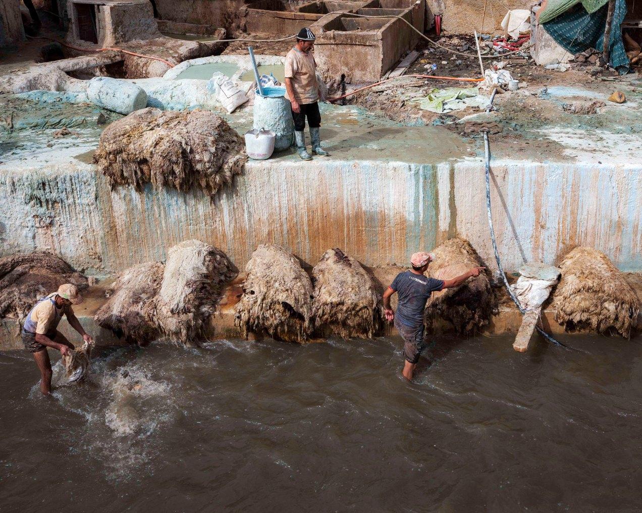 Le lavage des peaux, tanneries, Fès, médina, Maroc, gildalliere, 2014