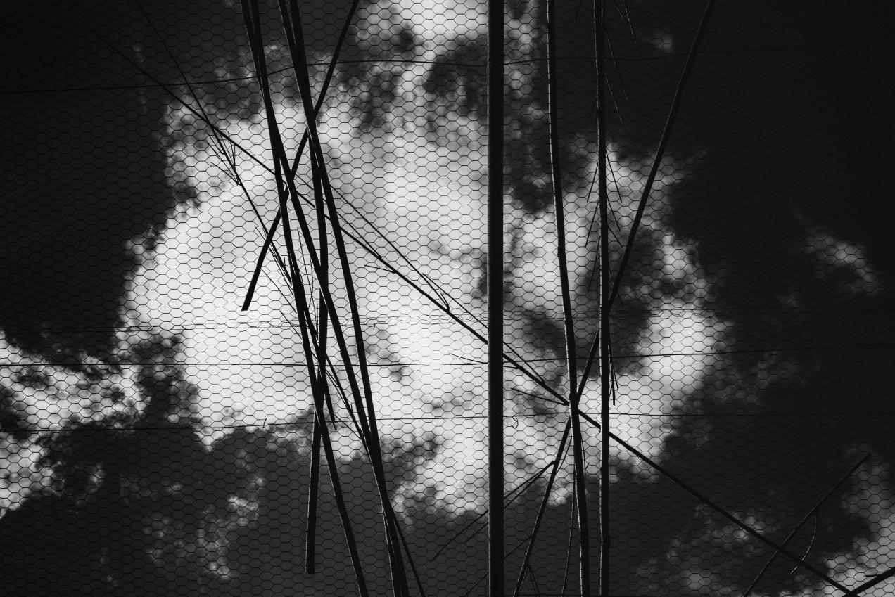 Le paradis perdu, Cythère, gildalliere, 2017