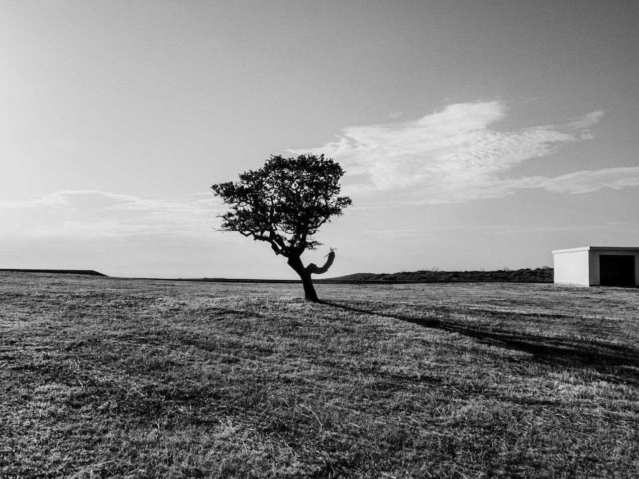 Terrain vague, Cythère, gildalliere, 2015